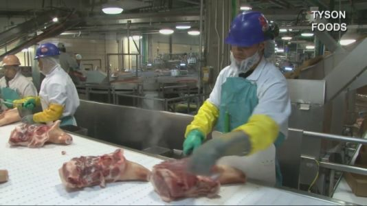 Tyson Foods Preparing to Give Employees COVID-19 Vaccine