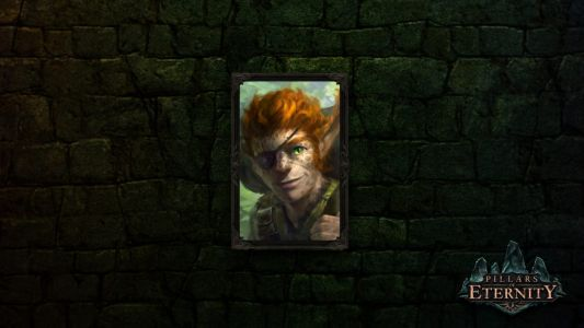 Ranking All 8 Companions In Pillars Of Eternity