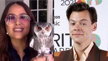 Salma Hayek's Story About Pet Owl And Harry Styles Has Marvel Fans Going In One Direction