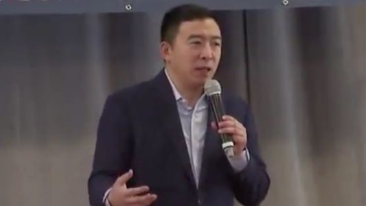 Andrew Yang Criticizes DNC for Rejecting Fox News Debate: Why Wouldn't You Jump at That Opportunity?