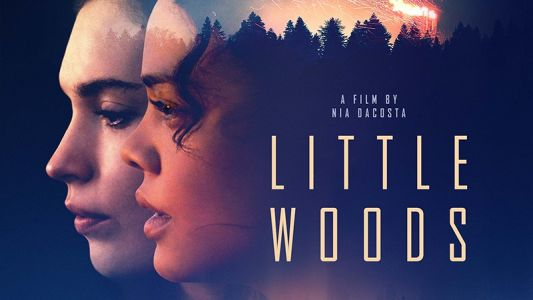 Little Woods Trailer: Tessa Thompson & Lily James Star in the Crime Drama