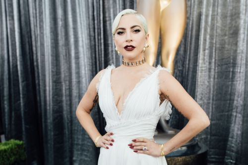 Lady Gaga's Dogs Reportedly Recovered; Dogwalker Expected to Recover
