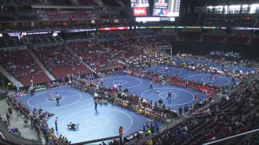 Economic Impact of State Wrestling Amid Pandemic