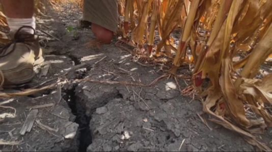 Melting Snow Won't Ease Iowa Drought Problems