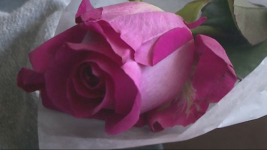Des Moines Homeless Shelter Celebrates Mother's Day With Roses