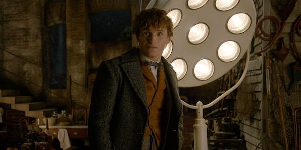 The Fantastic Beasts Stars Fill In The Story Gap Between The First And Second Movies