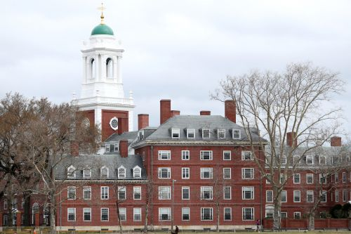Harvard Lampooned for Keeping Tuition at $50,000 Despite Decision to Hold All Classes Online Next Year: 'Highway Robbery'
