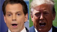 Anthony Scaramucci: Trump's Own Aides 'Absolutely Hate The Guy's Guts'